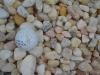 Medium White Stone